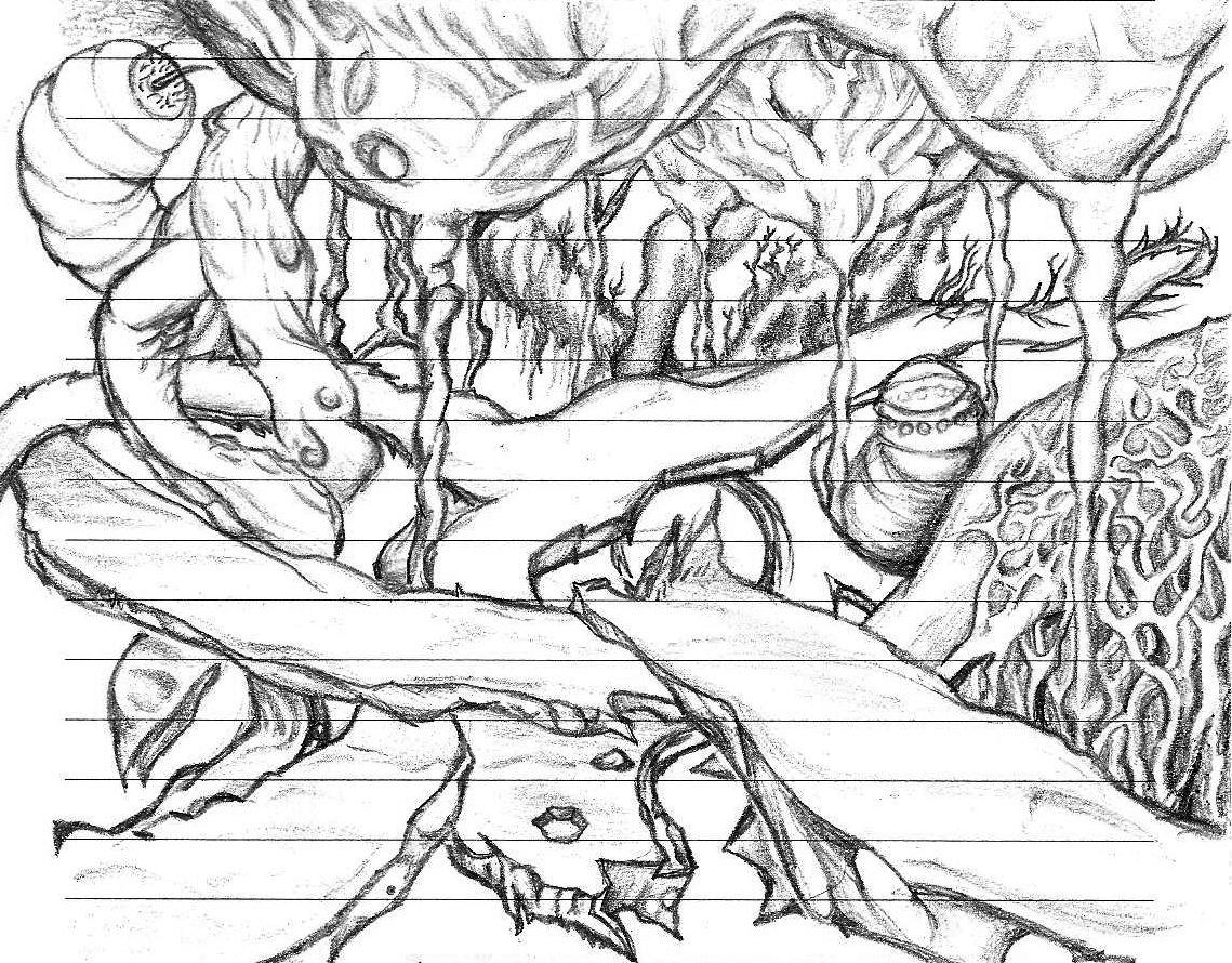 Drawing 'Paths'